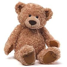 new teddy
